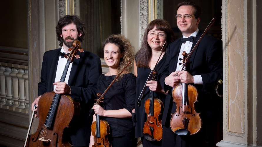 Incontri violini